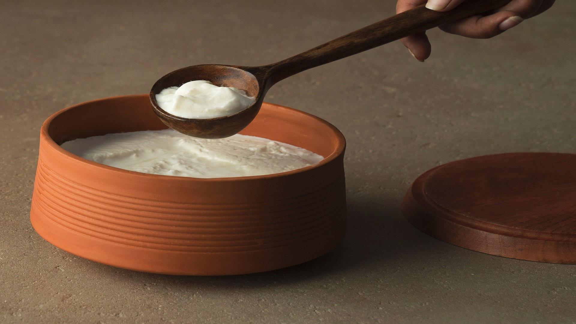 How terracotta curd setters are taking over the market - Ellementry